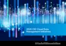 2020 CIO Cloud Data Management Initiatives nl